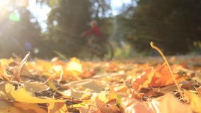 Mother and son ride bicycles in autumn stock footage