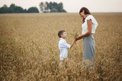 Mother with son smiling holding hands in a field in summer. The concept of maternal love and tenderness, the relationship between royalty free stock photography