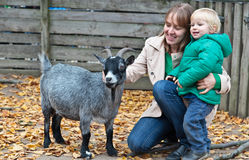 Family touching goat in Zoo Stock Image