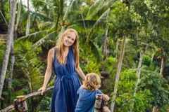 Mother and son travelers on view point in the background of a jungle, Bali, Indonesia.  royalty free stock photos