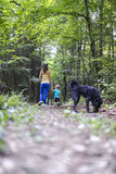 Mother and son on a walk with their dog. Young mother and her toddles son on a walk in beautiful woods with their black dog Royalty Free Stock Photography