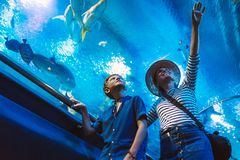 Mother and son walking in indoor huge aquarium tunnel, enjoying a underwater sea inhabitants, showing an interesting to each other royalty free stock photography