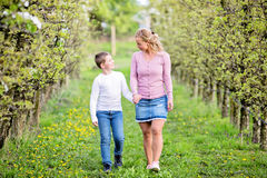 Mother and son walking in orchard. Looking at each other, holding hands. Apple trees right before bloom, dandelions in bloom Stock Photos