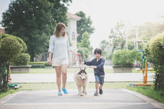 Mother and son walking with a siberian husky don in the park. Asian mother and son walking with a siberian husky don in the park Royalty Free Stock Photography