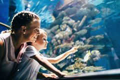 Mother and son watching sea life in oceanarium. Fascinated mother and son watching sea life in oceanarium Royalty Free Stock Photo