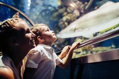 Mother and son watching sea life in oceanarium Stock Photo