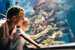 Mother and son watching sea life in oceanarium Royalty Free Stock Image