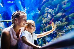Mother and son watching sea life in oceanarium. Fascinated mother and son watching sea life in oceanarium Royalty Free Stock Photography