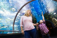 Mother and son watching sea life in oceanarium. Fascinated mother and son watching sea life in oceanarium Stock Images