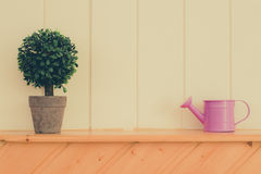 Mother and son. The watering pot made tree growed up Royalty Free Stock Images