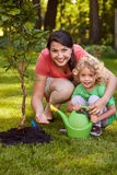Mother and son watering tree. Seedling in garden Stock Photos