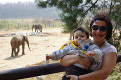 Mother son zoo. Mother holding son by elephants at a zoo Royalty Free Stock Photo