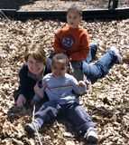 Mother and Sons. A mother plays outside in the leaves with her two young sons stock photography