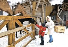 Mother and sons feed a horse in winter Stock Photo