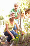 Mother And Teenage Son Relaxing In Garden Royalty Free Stock Images