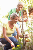 Mother And Teenage Son Relaxing In Garden Royalty Free Stock Photos