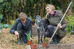 Mother and Teenage Son, Woman and Boy, Gardening Royalty Free Stock Images