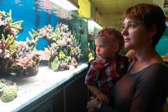 Mother with toddler at aquarium Royalty Free Stock Photos