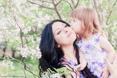 Mother with toddler in spring garden Royalty Free Stock Photography