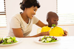 Mother trying feed son Royalty Free Stock Images