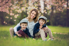 Mother with two children, boys, reading a book in a cherry bloss. Om garden, springtime Royalty Free Stock Image