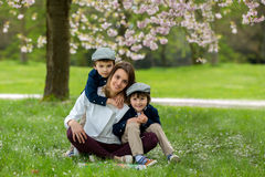 Mother with two children, boys, reading a book in a cherry bloss. Om garden, springtime Royalty Free Stock Photography