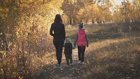 Mother and two children walking in the park and enjoying the beautiful autumn nature. Happy family on autumn walk. stock footage