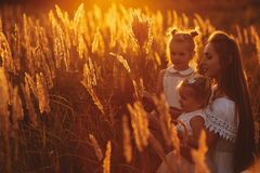 Mother and two daughters holding hands circling. Family time together at sunset. Cheerful picnic. Soft focus.  royalty free stock photo