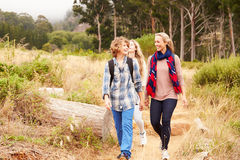 Mother and two kids walking on a forest trail Royalty Free Stock Image