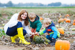 Mother and two little sons having fun on pumpkin patch. Royalty Free Stock Photos