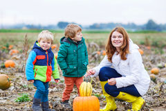 Mother and two little sons having fun on pumpkin patch. Royalty Free Stock Images