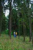 Mother and two sons in the dark green woods. For a walk Royalty Free Stock Photos