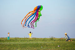 Mother and two sons flying kite together on green field Royalty Free Stock Image