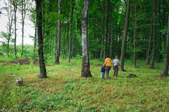 Mother and two sons in the green woods. For a walk Stock Image