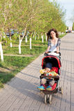 Mother walk in park this baby Stock Photography