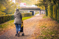 Mother walk stroller back tree lined avenue city park autumn Royalty Free Stock Images