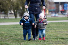 Mother walking with her two children off the leash Stock Photos