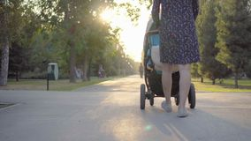 Mother walking with a pram in the park. Autumn nature background. Bottom view. Stedycam. stock video footage