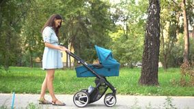 Mother walking with a pram in the park. Summer nature background. stock footage