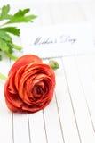 Mother& x27; día de s Fotos de archivo libres de regalías