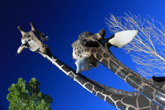 Mother and young giraffe statue Royalty Free Stock Photo