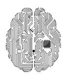 Motherboard brain. On white background for technology concept design royalty free illustration