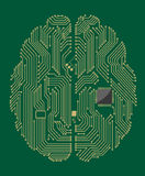 Motherboard brain with computer Stock Photos