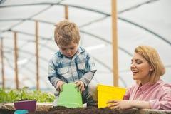 motherhood lyckligt moderskap med modern och sonen i växthus Isolerat på vitbakgrund moderskap är en gåva till en kvinna royaltyfri fotografi