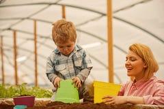motherhood lyckligt moderskap med modern och sonen i växthus Isolerat på vitbakgrund moderskap är en gåva till en kvinna arkivfoton