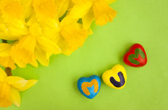 Mothering Sunday, hearts and daffodils. Yellow daffodils and hand painted hearts spelling the word mum. Mothering Sunday or Mother's Day concept royalty free stock photo