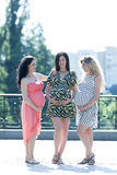 Motherly but sexy. Three young pregnant women having fun in the park Royalty Free Stock Photos