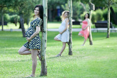 Motherly but sexy. Three young pregnant women holding their belly and leaning against a small tree in the park Royalty Free Stock Images