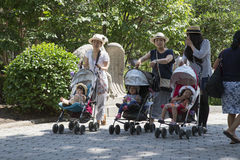 Mothers with children in strollers. Women with children and strollers in Central Park New York USA Stock Image