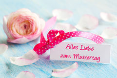 For mothers day Stock Photo